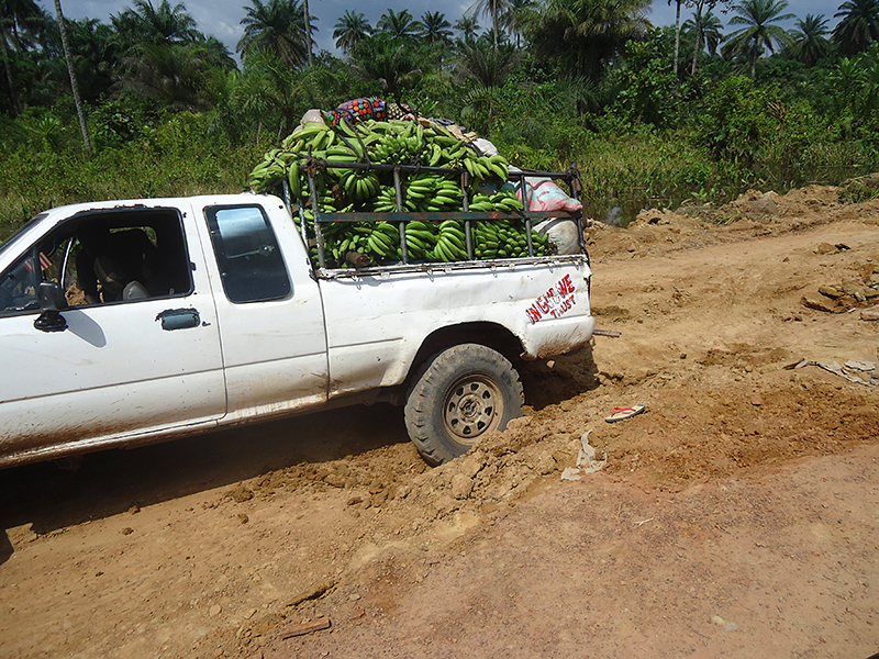 Overloaded pickup on dirt road