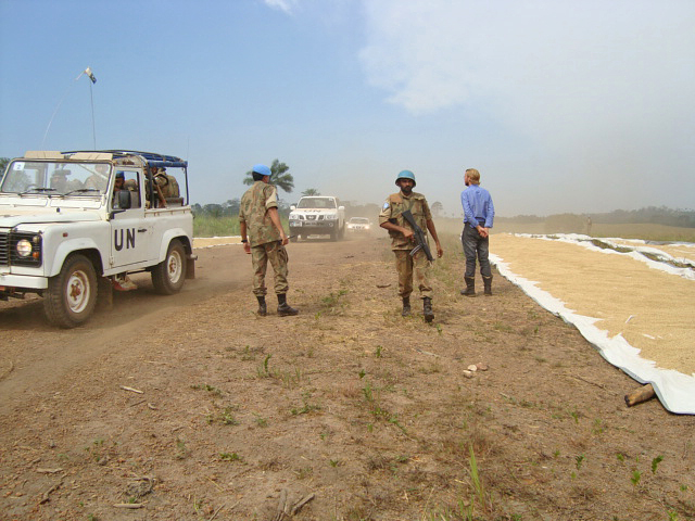 Unmil cars on rice field